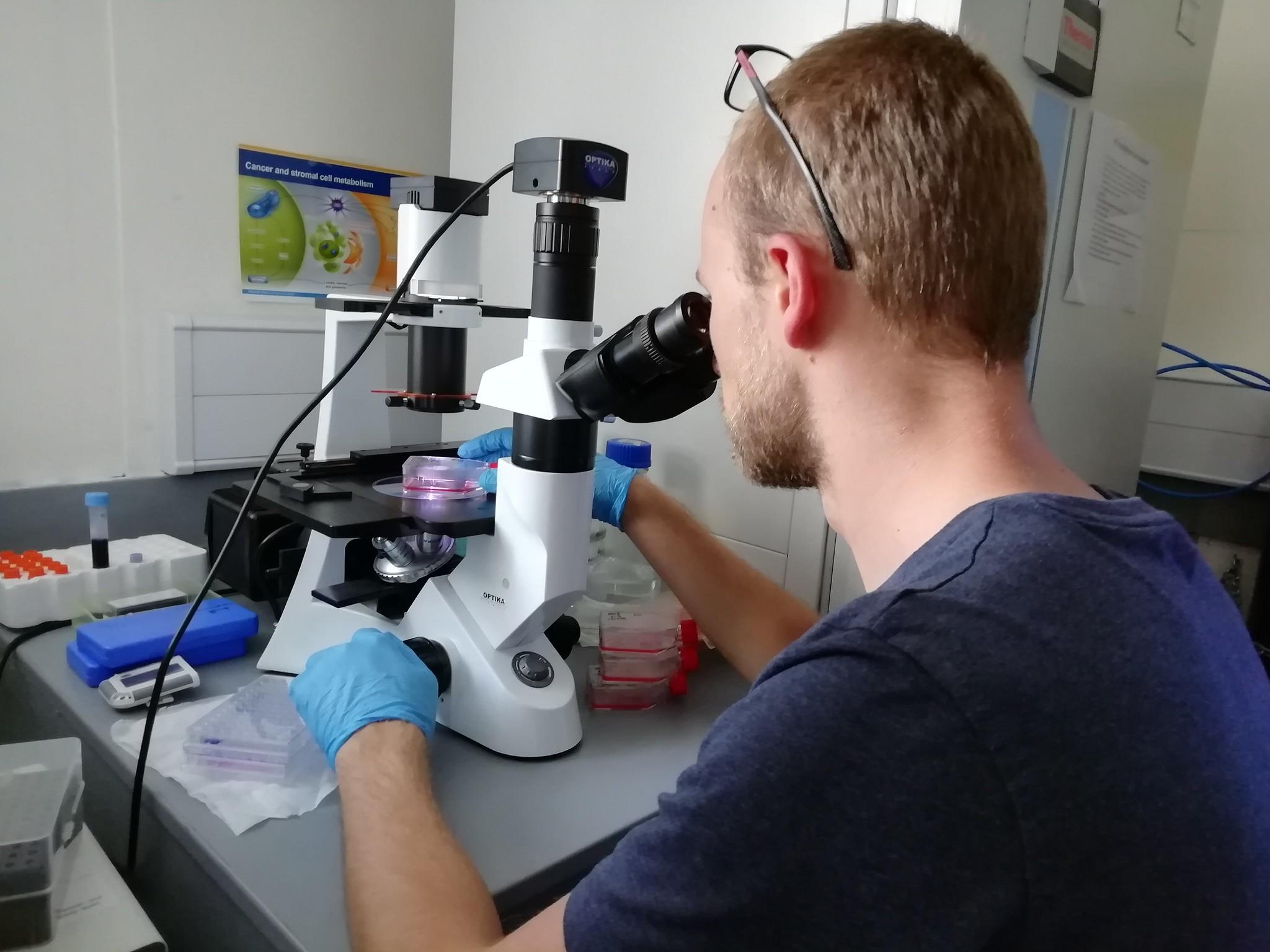 En person kikar i ett mikroskop
